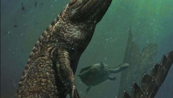 prehistoric_crocodile