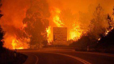 Οι πυρκαγιές που εκδηλώθηκαν σε δασικές και θαμνώδεις εκτάσεις στην Πορτογαλία κατέστρεψαν 1.410.000 στρέμματα βλάστησης από τις αρχές του έτους, ήτοι τρεις φορές περισσότερα σε σύγκριση με τον μέσο όρο των τελευταίων δέκα χρόνων.