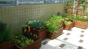 balcony-vegetable-garden
