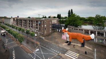 fox-rotterdam