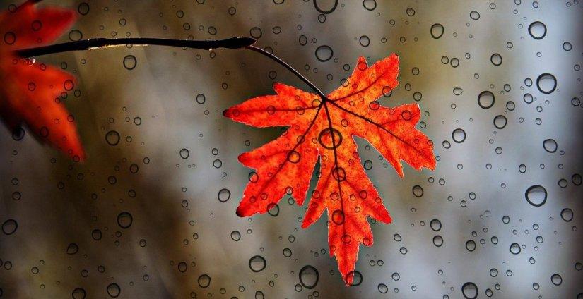 Πρώτη βροχή τέλος του Οκτωβρίου, μια πρόγευση του χειμώνα που μας έρχεται…