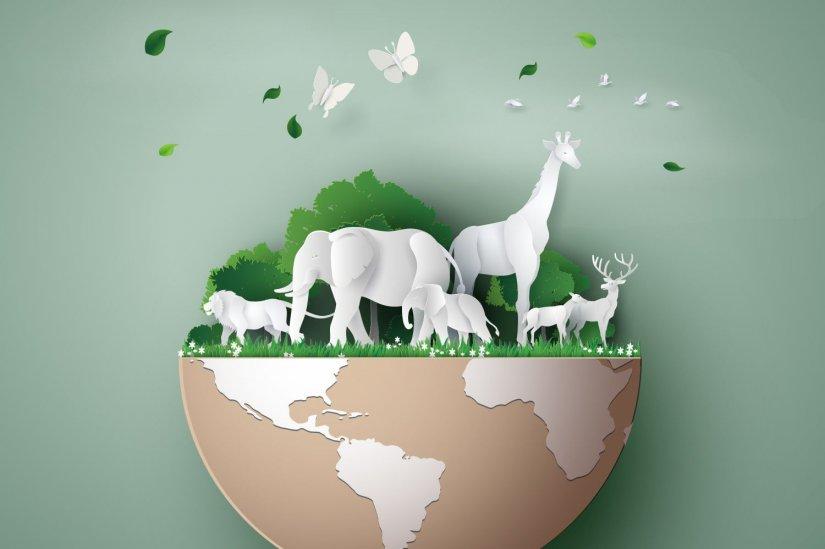ζώα, φύση, Γη