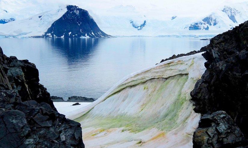 antarktiki_dr_matt_davey_via_getty_images