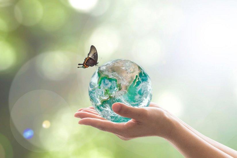 γυάλινη σφαίρα της γης, πεταλούδα, χέρια
