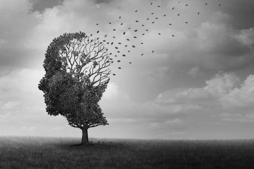 δέντρο, άνθρωπος, μυαλό, άνοια