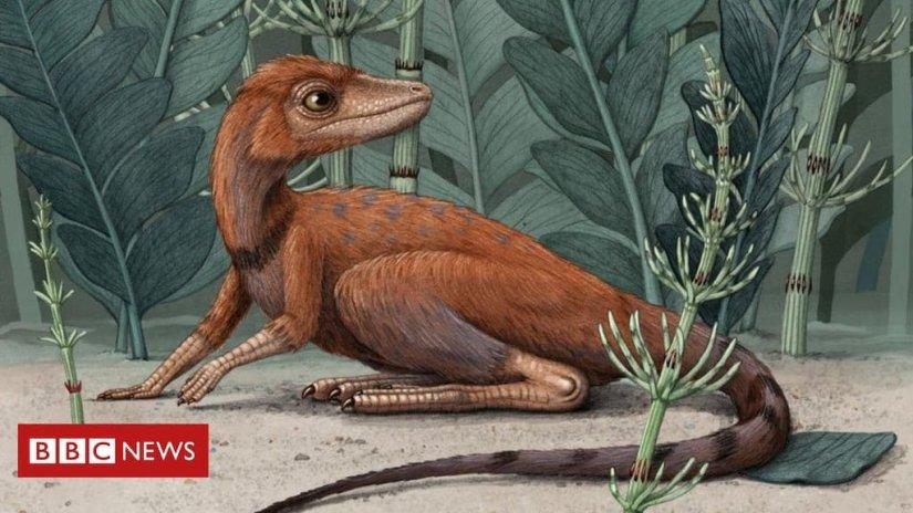 dinosaurs_ancestors_bbc