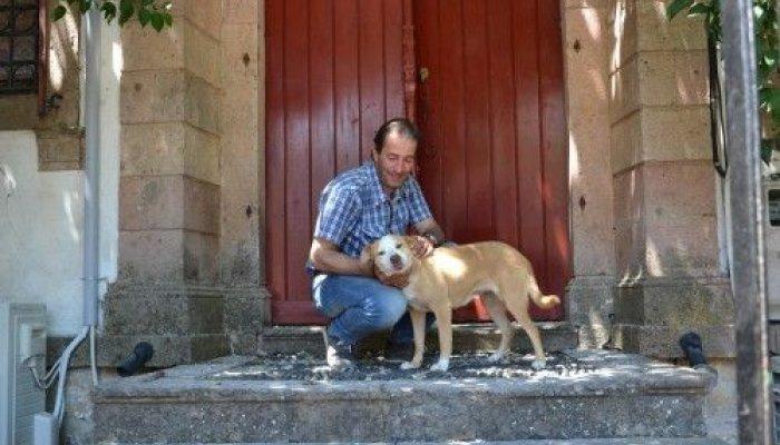 Το σκυλί της 43χρονης που σκοτώθηκε στη Βρίσα έσκαβε τα ερείπια για να την ξεθάψει και έμεινε εκεί κλαίγοντας