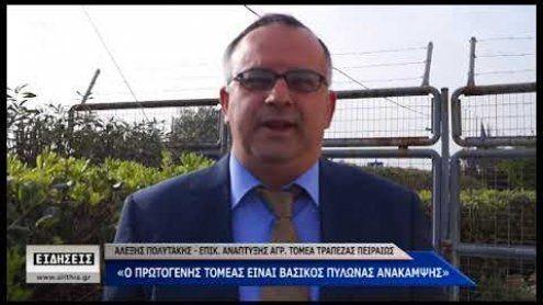 Αλέξης Πολιτάκης