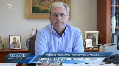 pantelis_mpogdanos_gia_erga_pathologikis_26_06_20