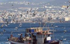 21η Νοέμβρη Παγκόσμια Ημέρα Αλιείας