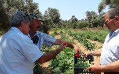 Με τον Πρόεδρο των Μεστών Ηλία Αυγουστίδη και τον παραγωγό Βιολογικών καλλιεργειών Ηλία Μουστρίδη