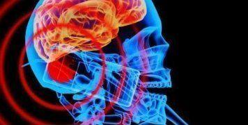 """Ερευνητές από την Αυστραλία μελέτησαν το """"φαινόμενο"""" για 29 χρόνια κι έχουν απάντηση"""