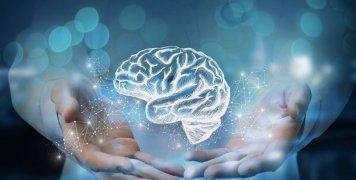 εγκέφαλος, χέρια γιατρού