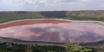 india-lonar-lake-pink