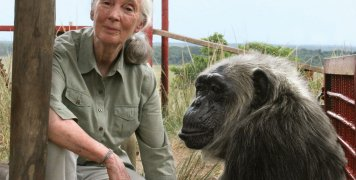 jane-goodall-talks-about-covid-19