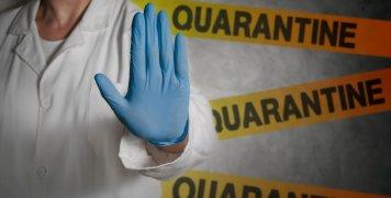 quarantine_art