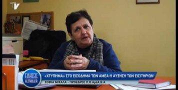 amea_kata_ayksisis_timis_aktoploikwn_eisitiriwn_17_01_20