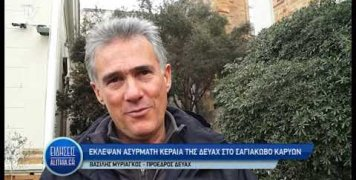 myriagkos_gia_klopi_keraias_se_karyes_06_02_20