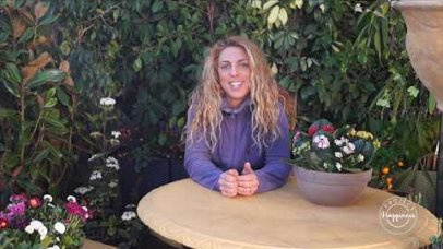 Project Happiness: Κηπευτικές εργασίες Μαρτίου από τη Μαρία Τσιαδή